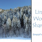 Links Worth Sharing – Week of January 26, 2013