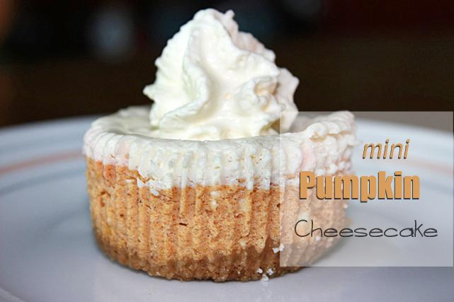 mini-pumpkin-cheesecake