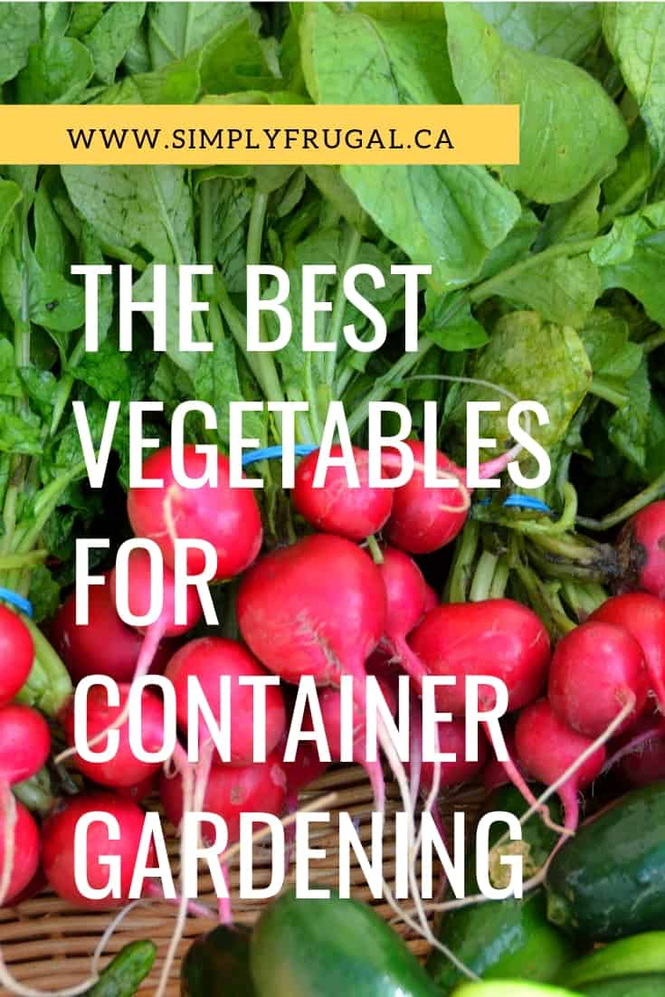 The best vegetables for container gardening. Since containers are just that, containers, they typically don't work well for all types of vegetables.  From my experience and online research, here are the best fruits and vegetables for successful container gardening