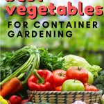 The best vegetables for container gardening. Since containers are just that, containers, they typically don't work well for all types of vegetables.  From my experience and online research, here are the best fruits and vegetables for successful container gardening.
