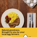 Egg Coupon: Save $1 off 2 Dozen Eggs