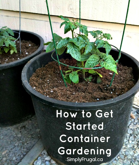 https://www.simplyfrugal.ca/wp-content/uploads/2013/05/start-container-gardening.jpg