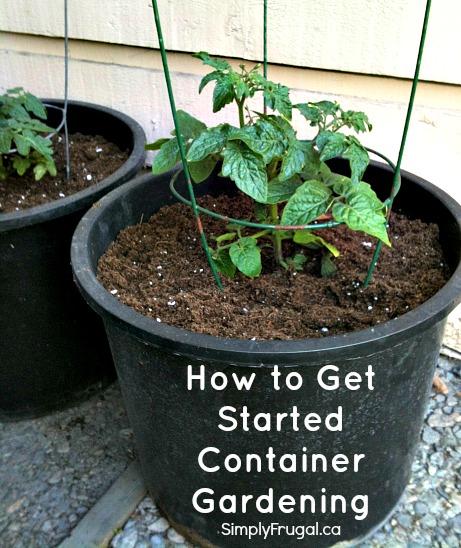 http://www.simplyfrugal.ca/wp-content/uploads/2013/05/start-container-gardening.jpg