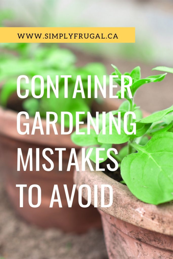 Here are 5 container gardening mistakes to avoid so you can grow a successful garden! #gardening #containergardening #vegetablegarden