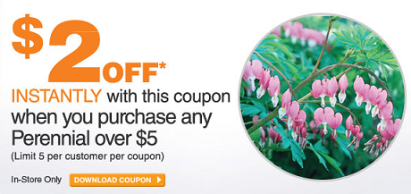 home depot perennial coupon