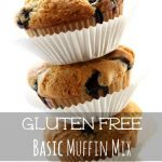 Gluten Free Basic Muffin Mix