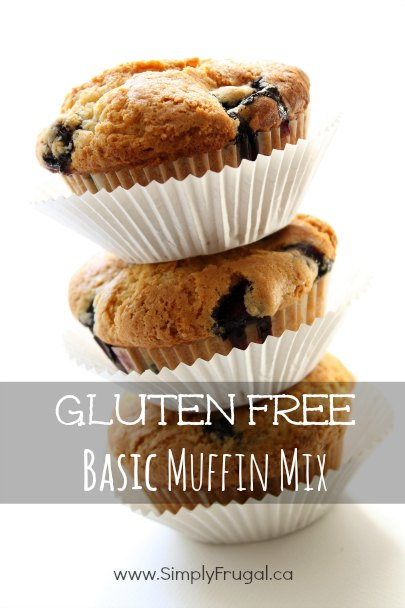 This delicious Gluten Free Basic Muffin Mix makes a large batch of muffins that are easily adaptable to your flavor preferences!