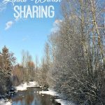 Links Worth Sharing: Week of December 20, 2014
