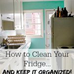 How to Clean Your Fridge…and Keep it Organized