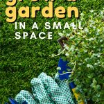 5 Ways to Grow a Garden in Small Spaces