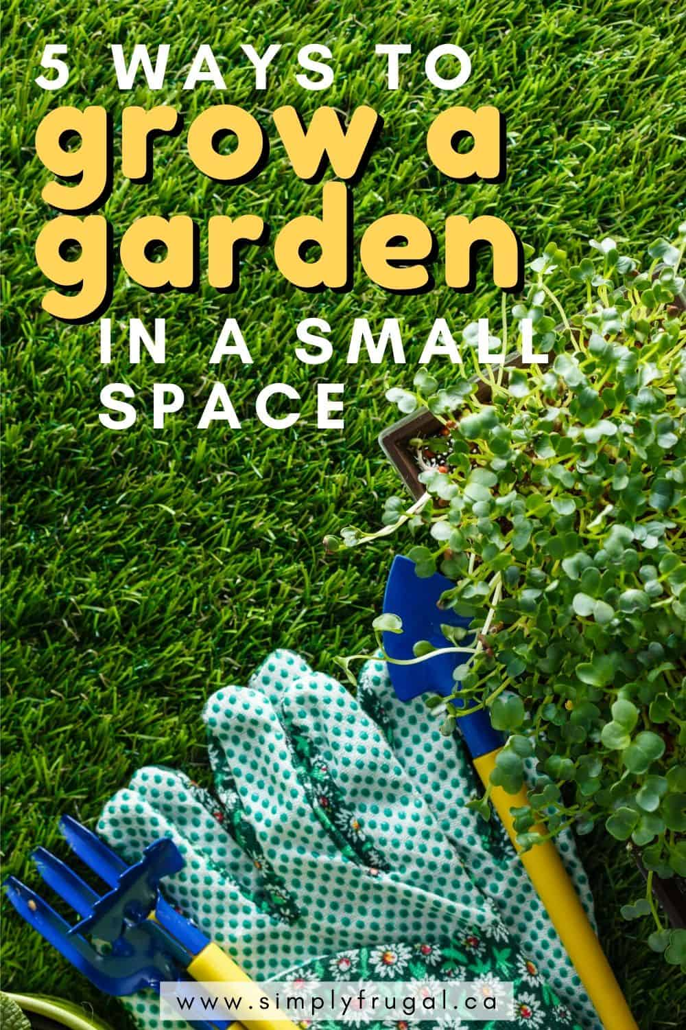 Here are 5 Ways To Grow A Garden In Small Spaces so that you will be able to supplement your groceries as well as bring you the joy of watching a garden grow!
