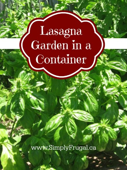 Lasagna Garden in a Container