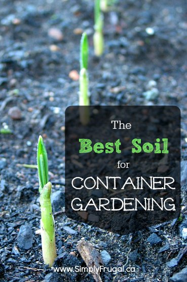 The best soil for container gardening - Soil for container vegetable gardening ...
