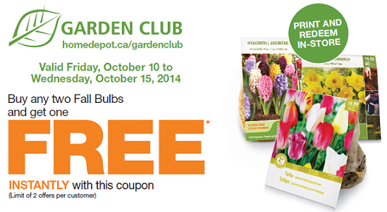 home depot fall bulbs