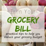 New eBook: Trim Your Grocery Bill