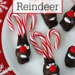 Easy DIY Candy Cane Reindeer
