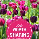 Links Worth Sharing: Week of March 21, 2015