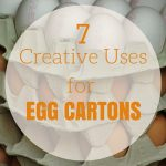 7 Creative Uses for Egg Cartons