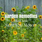 7 Garden Remedies That Will Save You Money