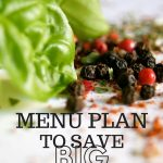 52 Ways To Save: Menu Plan to Save Big (Week 19)
