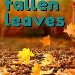 Are you up to your ears in leaves? Well the good news is they do have a few fun uses! Take a peek at these 5 creative ways to use those fall leaves, in ways that are both fun and frugal!