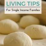 7 Frugal Living Tips For Single Income Families