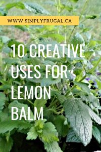 Because lemon balm grows so abundantly, you might be searching for ideas on how to put it to use. Here are 10 uses for lemon balm that you're sure to enjoy!