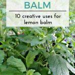 10 Uses for Lemon Balm