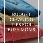 Budget Cleaning Tips For Busy Moms