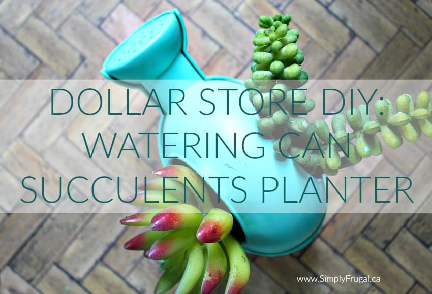 DIY Watering Can Succulents Planter
