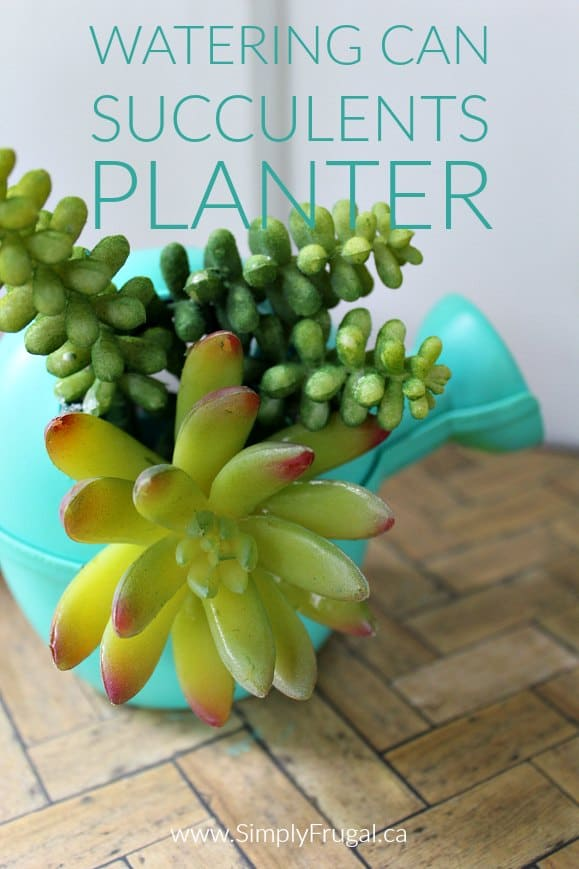 Watering Can Succulents Planter