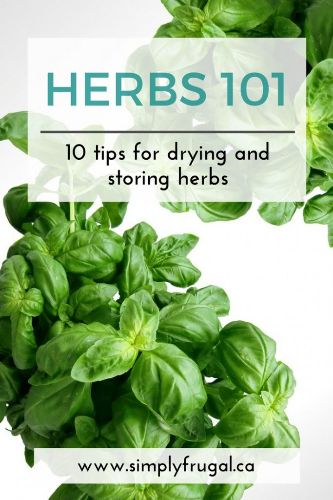 10 Tips for Drying and Storing Herbs