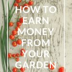 How to Earn Money from your Garden