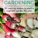 20 Reasons to Plant a Garden