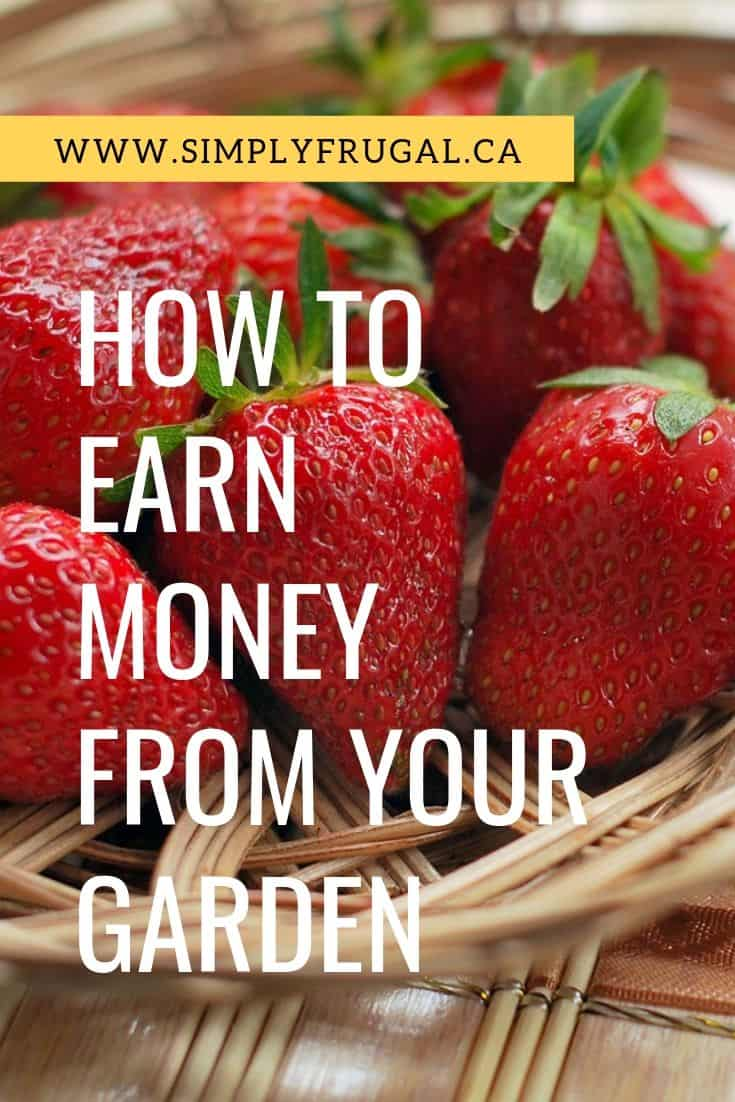 How to earn money from your garden. These 4 ideas will help you earn extra money from your garden.