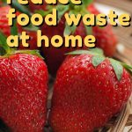 With a little creativity and some smart shopping, it's possible to reduce food waste at home quite easily. Here are 11 ideas to get you started!