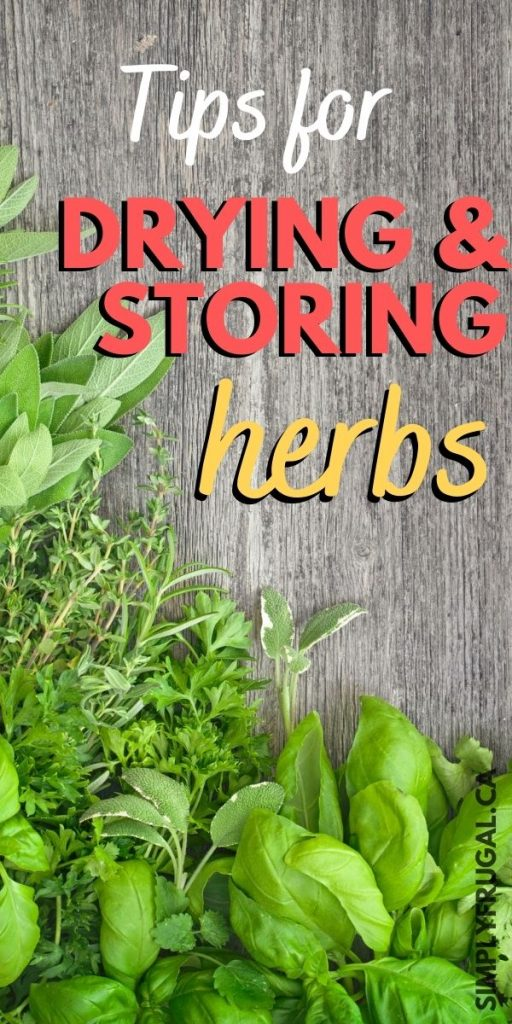 Tips for drying and storing herbs
