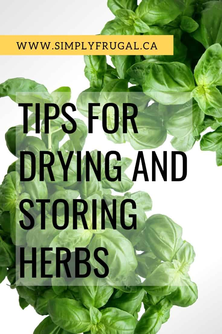 Here are 10 tips to help you dry and store herbs that will make it easier on you and help prevent you from ending up with non-usable grocery items. #garden101 #herbs #garden #preserve #simplyfrugal