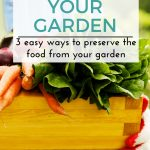 Three Easy Ways to Preserve the Food From Your Garden
