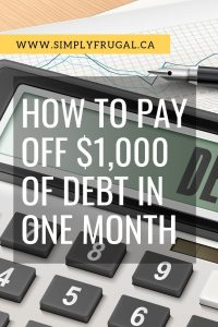 How to Pay off $1,000 of Debt in One Month. It may sound crazy, but lots of people have done this and so can you!