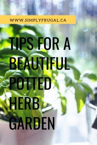 With a little planning and work, you can have a beautiful potted herb garden to accent any space using the tips provided here.