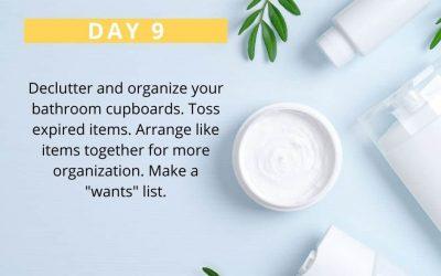 No Spend Declutter Challenge: Day 9