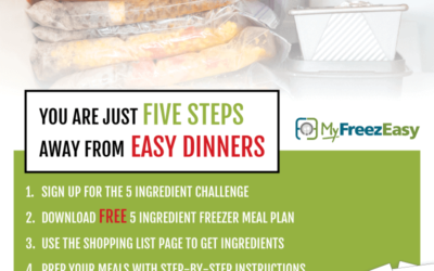 5 Ingredient Freezer Meal Challenge